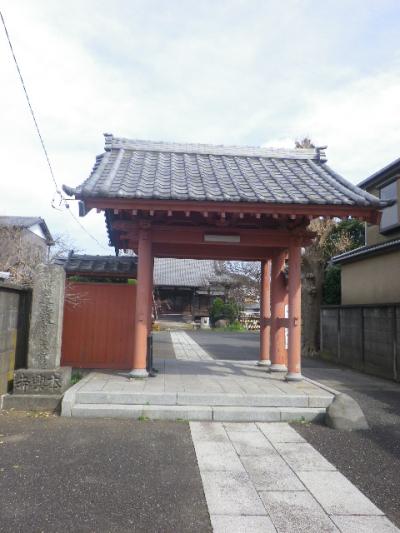 01)    17.04.02 鎌倉「本興寺」の枝垂れ桜