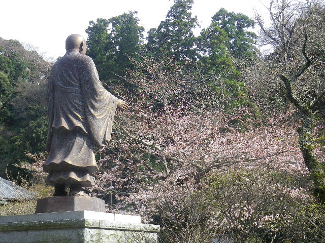 06) ' 日蓮聖人像 ' 周辺の桜    17.04.02 鎌倉「妙本寺」の桜