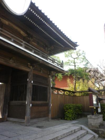 01-1)    17.04.02 鎌倉「本覚寺」の桜