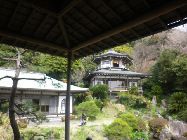 12)   17.04.02 鎌倉「光明寺」の桜