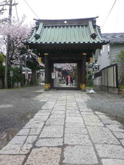 03)    17.04.10 鎌倉「妙隆寺」の桜