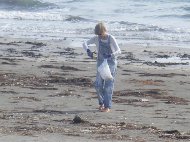 12) 推測だが イベントでもなさそうで申し合わせでもなさそうにお見受けの、自主的に単独で海岸清掃を為さっておられる方。    17.04.23 のどが渇いたから発泡酒のんだ