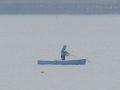 03)   17.04.22 逗子マリーナ(~飯島地区)から、曇天朝の海を漫然と撮っただけ。