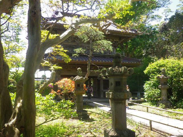 05-1)   仏殿に背を付けて撮った、山門。呼び方を知らないが表と裏の、裏側。 17.05.05端午  鎌倉「英勝寺」立夏。