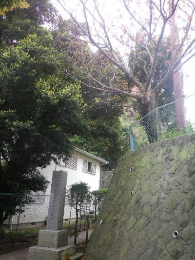 50) 写真40-1)右方向の  ' 光明寺歴代住職御廟所 ' 入口  17.04.17 近所の山桜などをテキトーに撮った