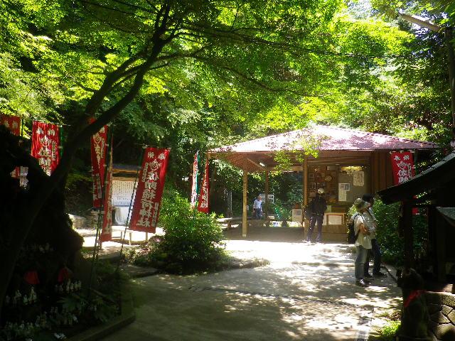 D01)  社務所方向   17.06.15 鎌倉「佐助稲荷神社」参拝