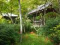 07)   17.09.19  初秋の 鎌倉「浄光明寺」