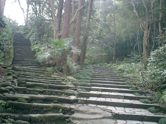 B06    07.02.21 鎌倉「瑞泉寺」梅の季節