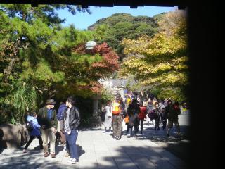 03-2)16.11.25 鎌倉「高徳院」アソコから覗いた