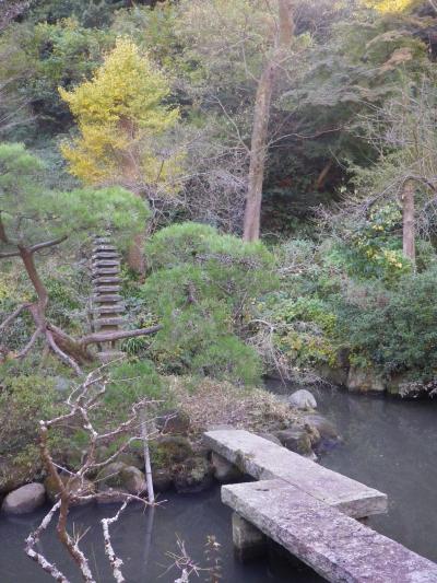 12)    17.11.25 初冬の鎌倉「光則寺」