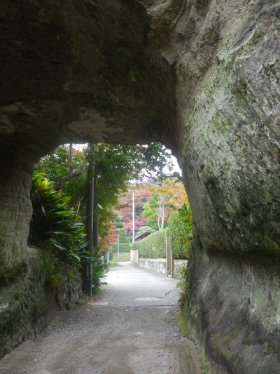 08-3)   17.11.30 鎌倉「寿福寺」 紅葉の頃