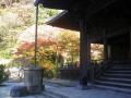 F01-1) 祖師堂周辺   17.12.06 鎌倉「妙本寺」紅葉の頃