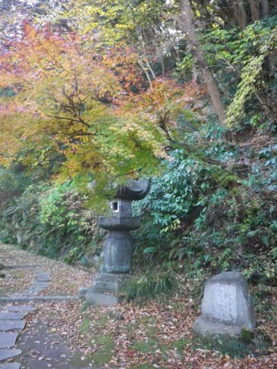 07)   17.12.12 鎌倉「安国論寺」今日は富士山が見えたヨ