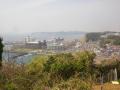 00-1)    18.03.27 逗子「大崎公園」の桜」」