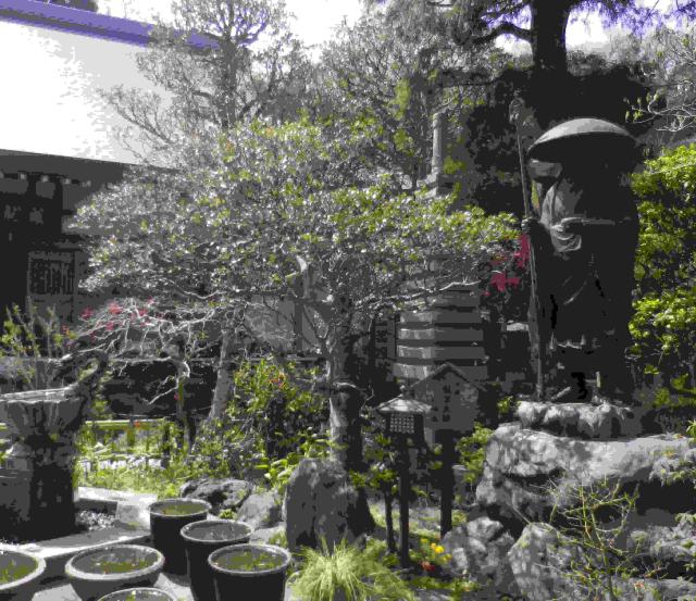 06a)  境内  18.03.30 鎌倉「成就院」桜が咲く頃