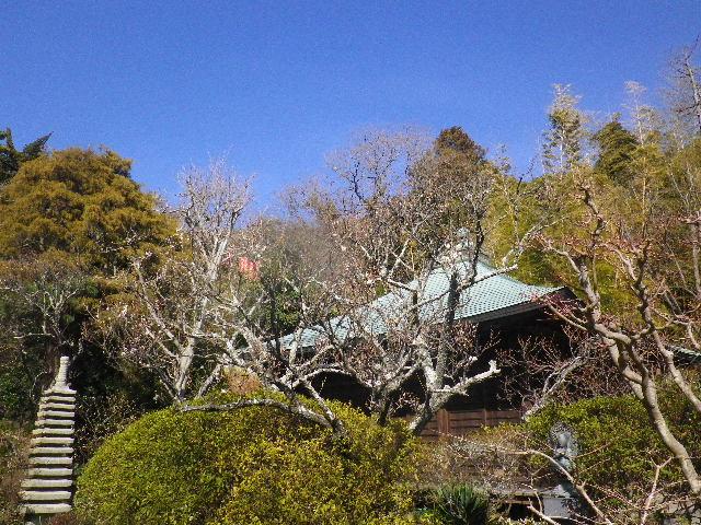 02-1) 背景は、不動堂の屋根。