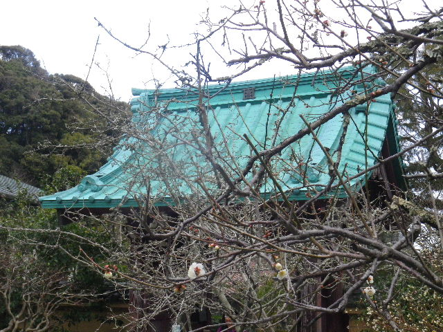 08-1) 15.02.21 早春の鎌倉「光則寺」
