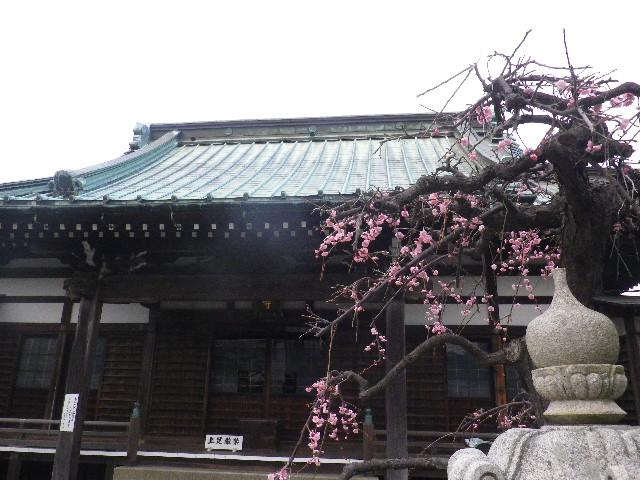 04) 浄土宗 内裏山霊嶽院九品寺 ( だいりさんれいがくいんくほんじ )