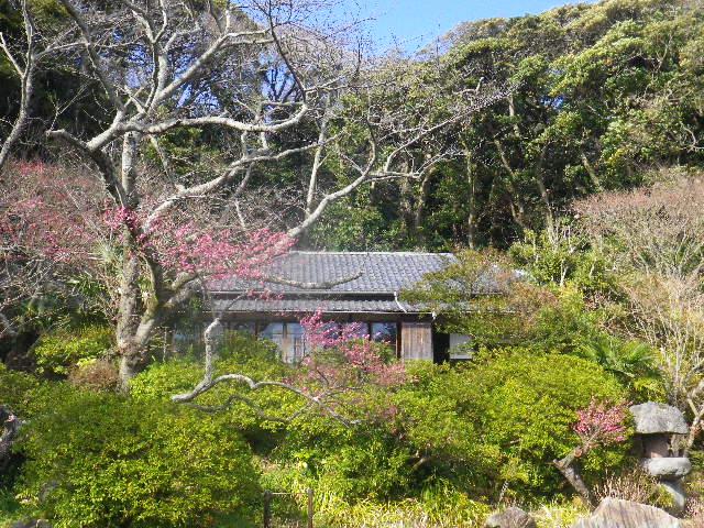 03-1-01) 旧 川喜多邸(旧 和辻哲郎邸を移築)