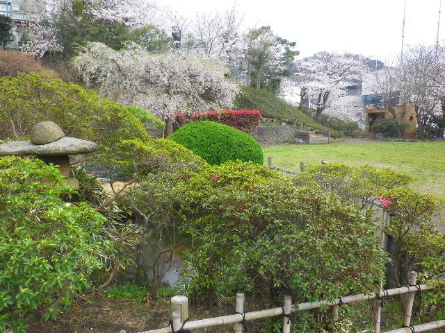 01-2) 葉山町役場の庭
