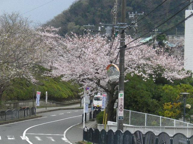 03) 幹線道路R134から逸れて入った、葉山町役場前の道路。