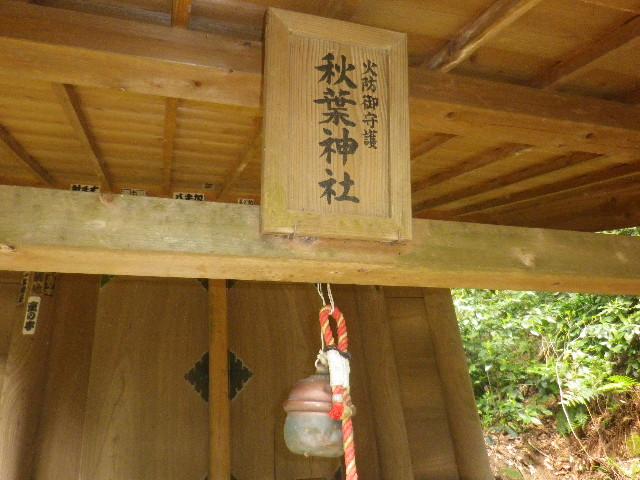 09-3) 15.04.06 ' 山の音 '、鎌倉最古「甘縄神明宮」桜の頃。