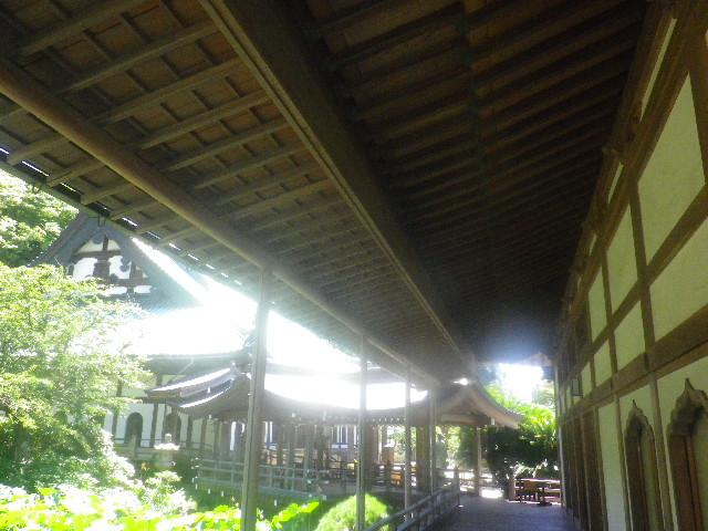 03-2)  15.08.05 鎌倉「光明寺」