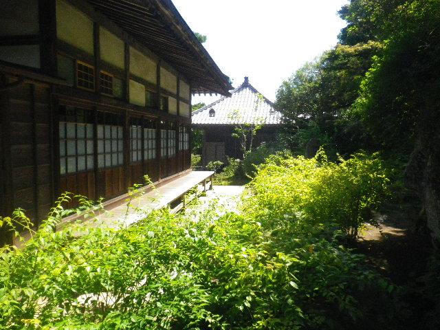 06-1) 15.09.12 鎌倉「海蔵寺」萩が咲く頃