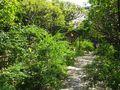 02-1) 15.09.12 ' 萩の寺 ' 鎌倉「宝戒寺」を、外からチョロッっと偵察しただけ。