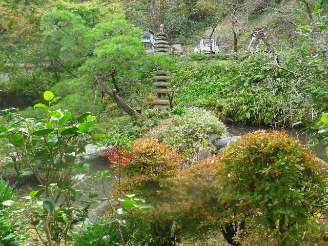 08-3)  15.11.17 初冬の鎌倉「光則寺」