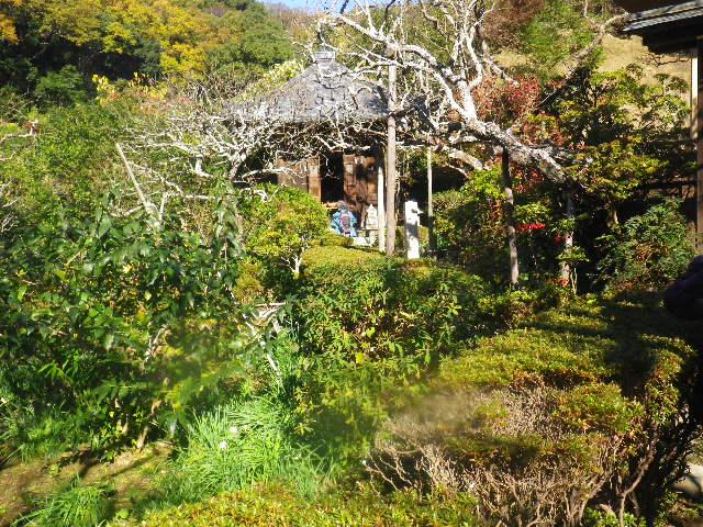 32) _ 15.12.05 鎌倉「瑞泉寺」紅葉は、微妙に もう少し先。