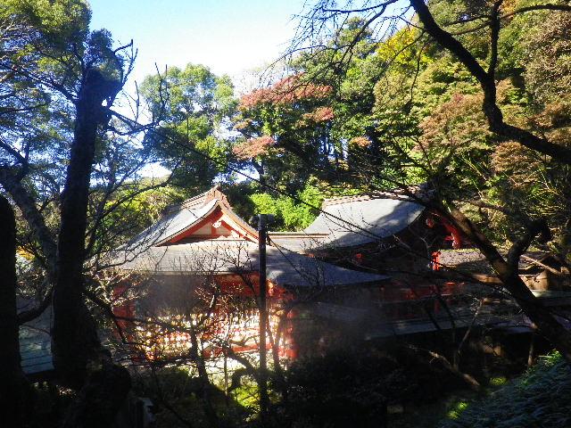 05) _ 15.12.05 鎌倉「荏柄天神社」受験合格祈願者が集う頃