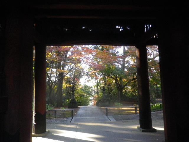 04) 山門を潜って振り返った