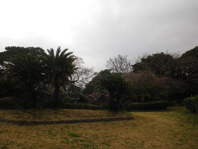 04)  _ 16.03.06 曇りのち雨の逗子「大崎公園」