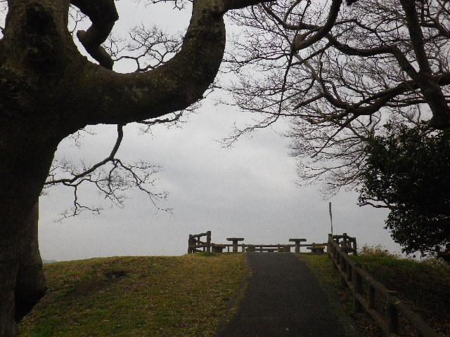 08-1) 岬先端の展望場所  _ 16.03.06 曇りのち雨の逗子「大崎公園」