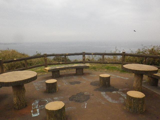 08-2) 岬先端の展望場所  _ 16.03.06 曇りのち雨の逗子「大崎公園」