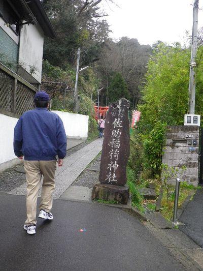 01) 16.03.20 鎌倉「佐助稲荷神社」初詣