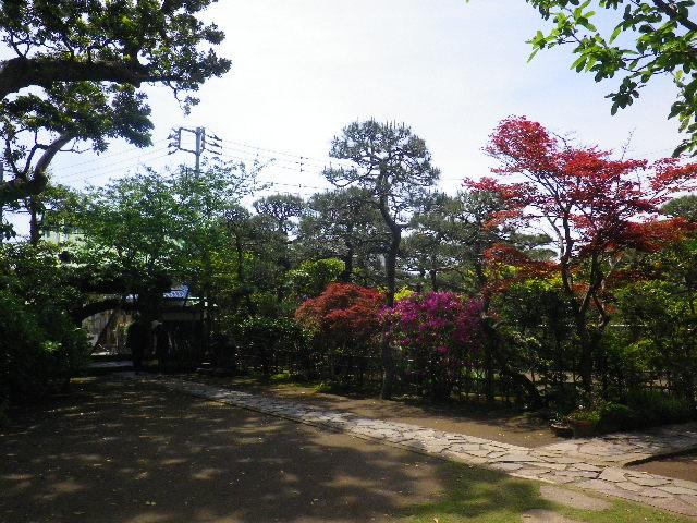 05) _ 16.04.30 立夏直前の 鎌倉「教恩寺」