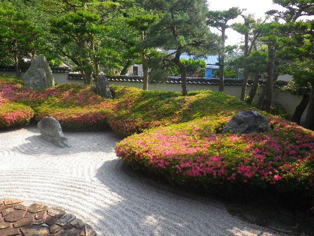 01-3) 16.05.21 鎌倉「光明寺」石庭にサツキが色を添える頃