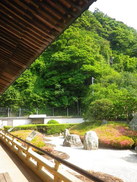 01-6) 16.05.21 鎌倉「光明寺」石庭にサツキが色を添える頃