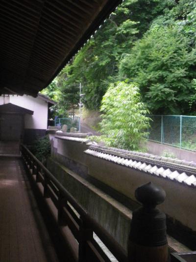 06) 大典裏の回廊から古道 _ 16.06.19 蓮が咲き始めた 鎌倉「光明寺」