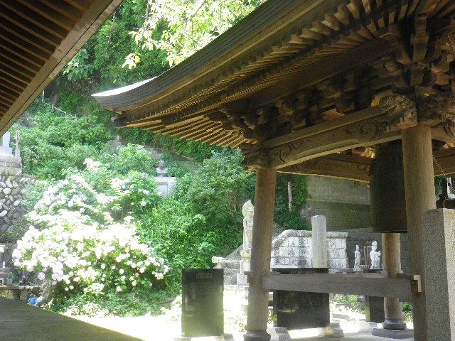 F01-1)   16.06.27 鎌倉「長勝寺」今年一年の折り返しに差し掛かる頃