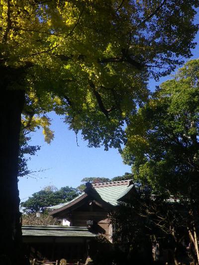 02-4) 16.12.02 初冬の 鎌倉「荏柄天神社」