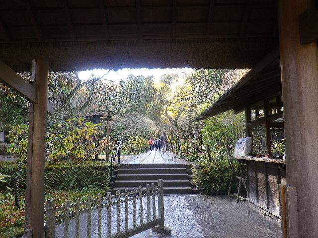 01-2)   16.12.05 初冬の 鎌倉「東慶寺」