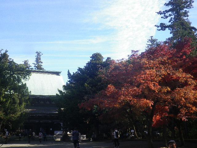 C01)  16.12.05 初冬の 鎌倉「円覚寺」