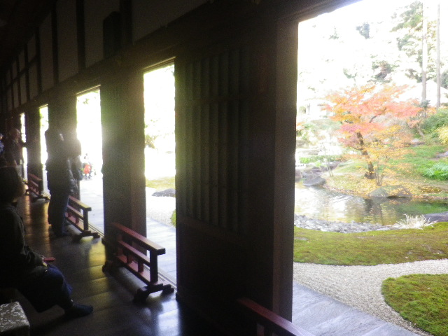 G01-1)  16.12.05 初冬の 鎌倉「円覚寺」