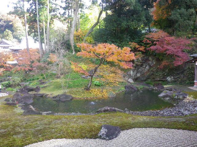 G01-2)  16.12.05 初冬の 鎌倉「円覚寺」