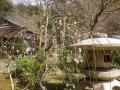 02-2)  境内で撮影を許可されている範囲    17.02.18 鎌倉「覚園寺」 旧友たちの冥福を祈りました