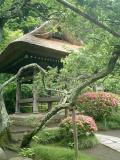 Cimg0023_18079943394_o  06.06.10 鎌倉「東慶寺」