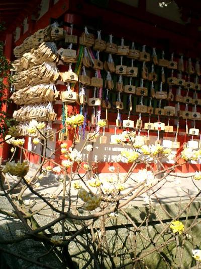04_07.02.21 鎌倉「荏柄天神社」梅の季節